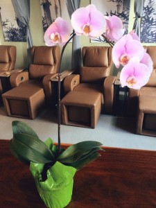 Relaxing foot massage and reflexology at barefoot oasis